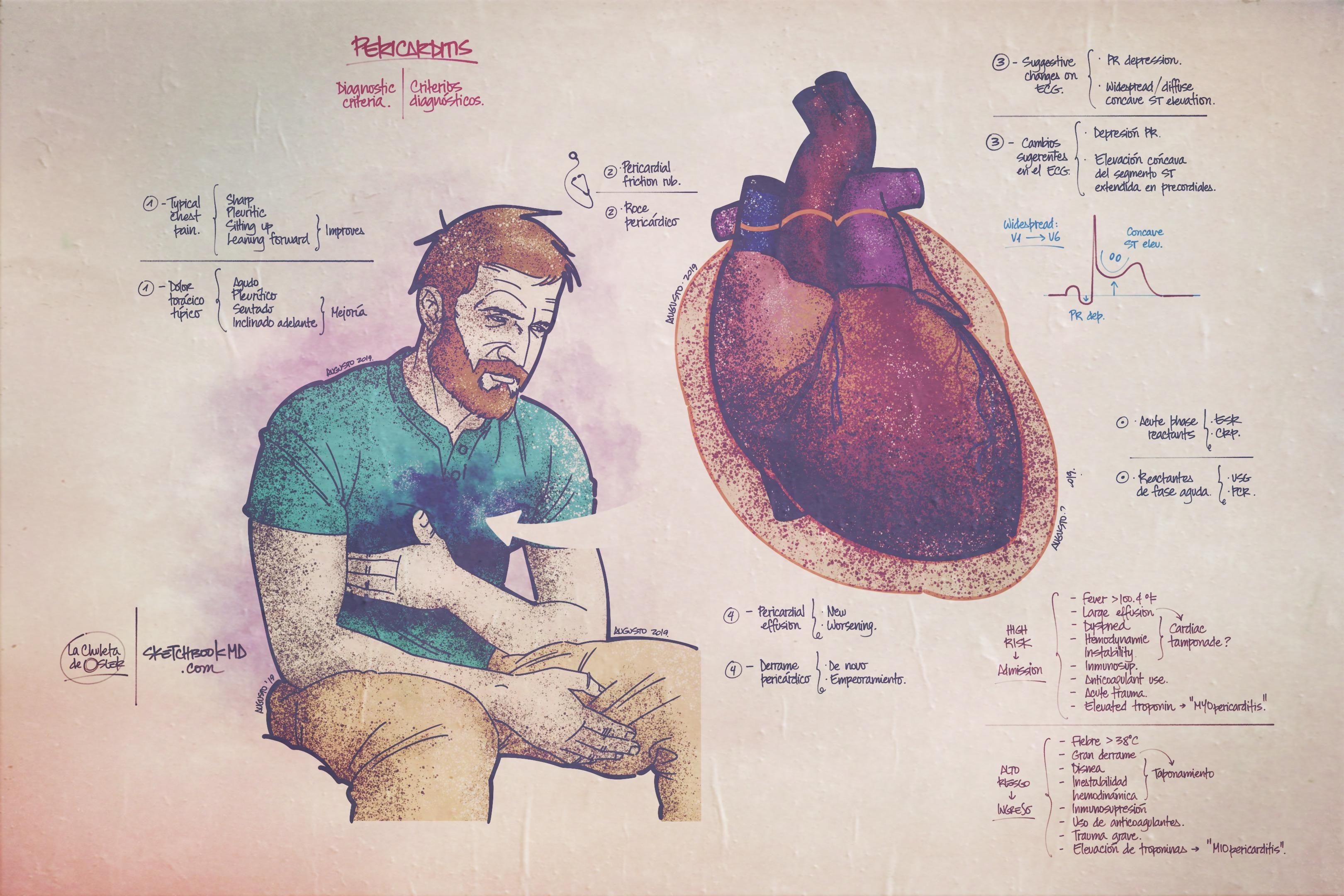 Medicina Docencia Rafalafena